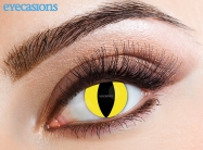 Feline Fashion Contact Lenses