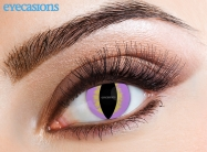 Purple Lizard Fashion Contact Lenses