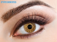 One Tone Hazel Fashion Contact lenses