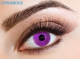 One Tone Violet Fashion Contact lenses